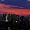 新宿高層ビル群と夕焼け