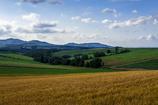 パノラマの丘