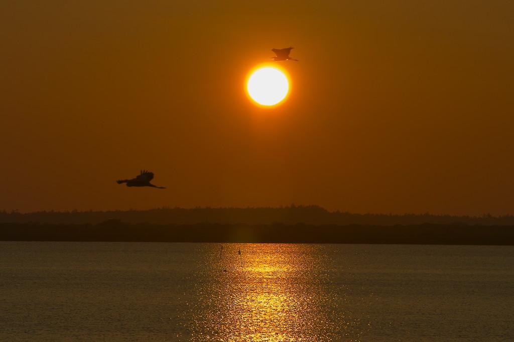 パンケ沼からの夕陽