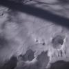 SnowShoes080211_084653