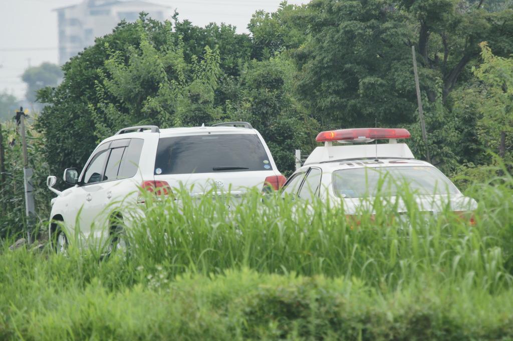 4931 田舎道でも安全運転
