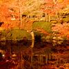 清水寺 池 紅葉
