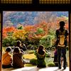 天龍寺 曹源池庭園 3