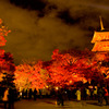 清水寺 紅葉と三重塔
