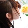 NIKON NIKON D90で撮影した(DSC_4203-2)の写真(画像)