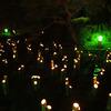 竹行灯の川