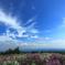 産山村の青空