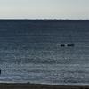 昼下がりの播磨灘1