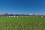稲刈り後を行くエヴァデザイン新幹線