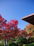 神戸須磨離宮公園の和室1