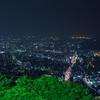 須磨浦山上遊園にて3(夜景)