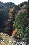 滑川(なめかわ)渓谷1
