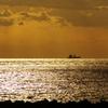 光る海(播磨灘)