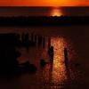 播磨灘の夕日1