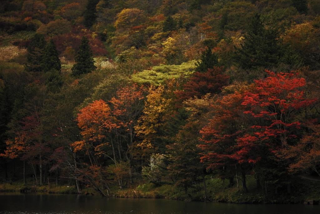 茶臼山高原2