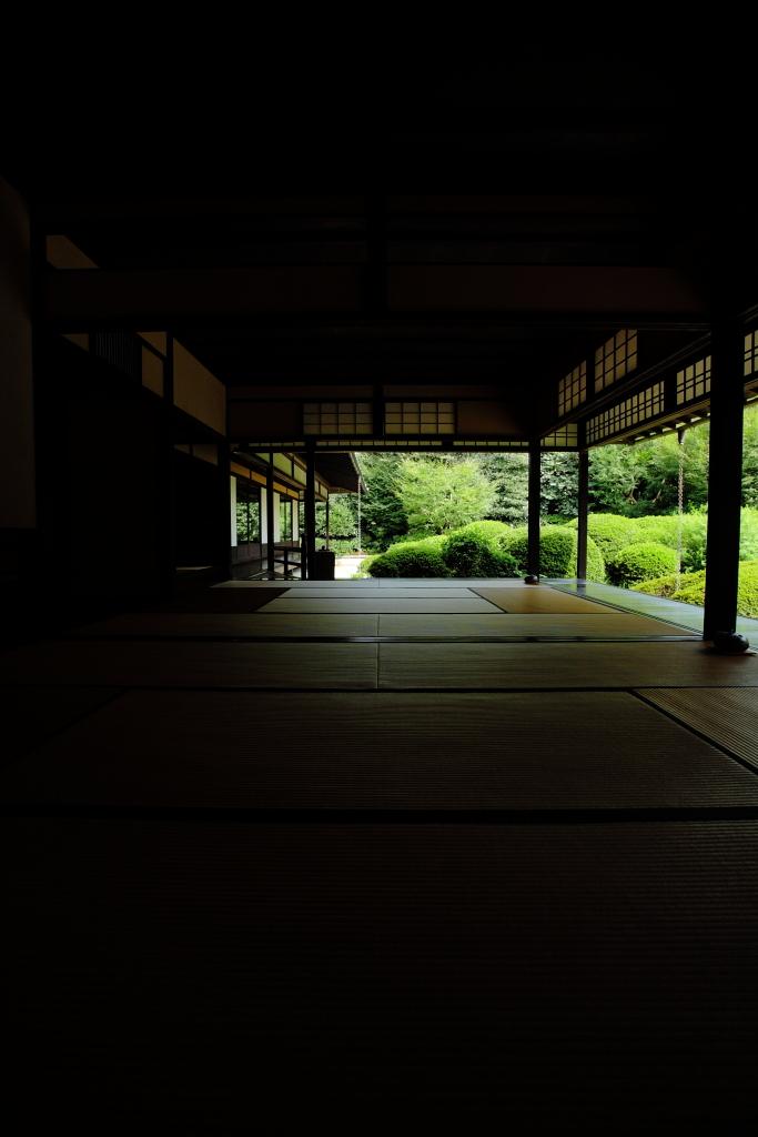 畳と庭のある風景