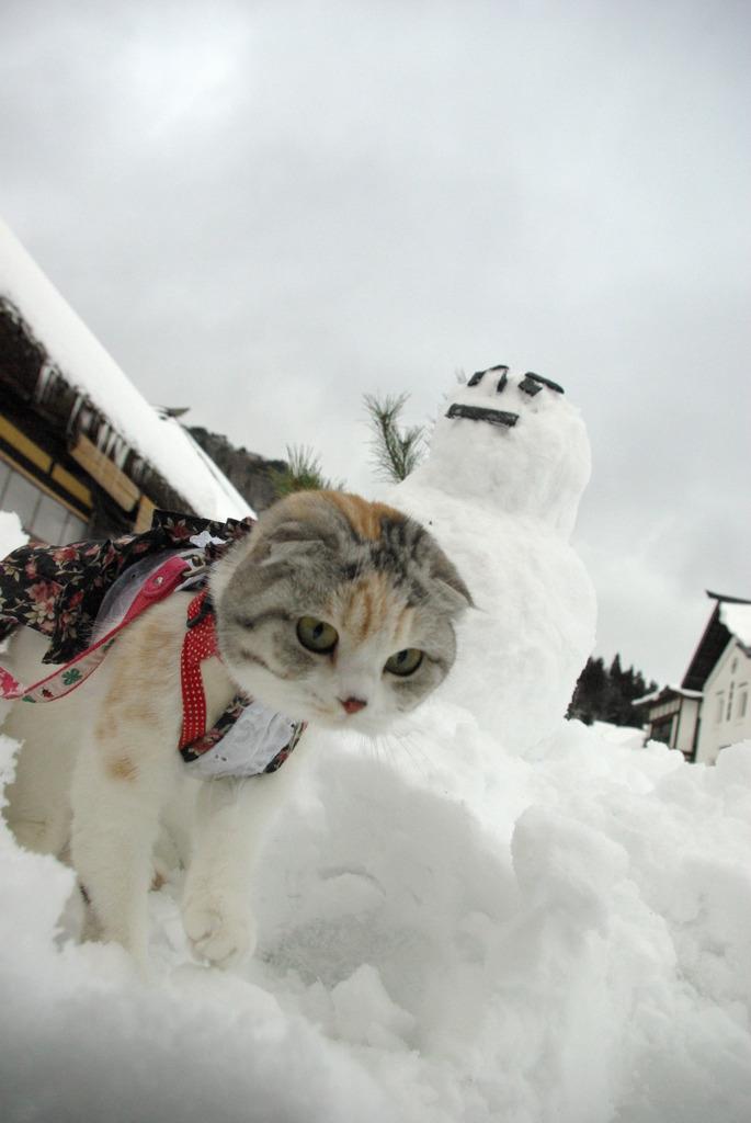 大内宿の雪だるま