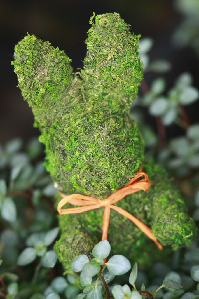 緑のウサギさん。