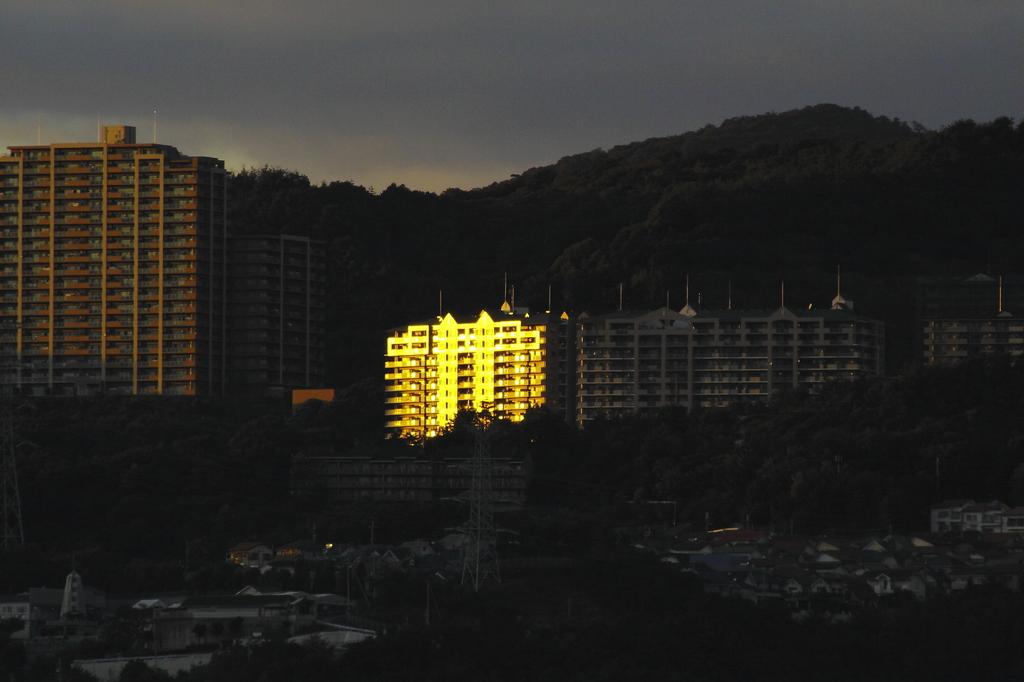 黄金のマンション