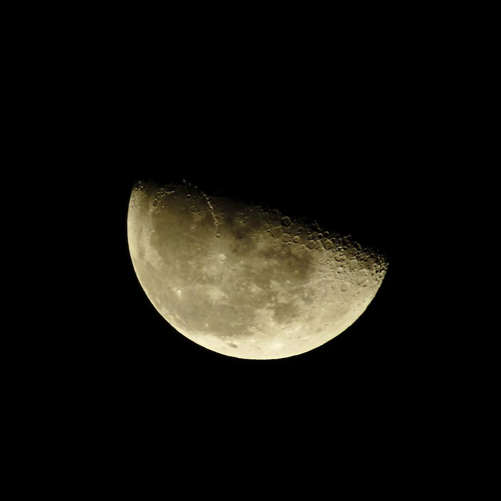 東の空低く顔を出した下弦の月。