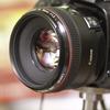 夏レンズ2(EF50F1.2L)