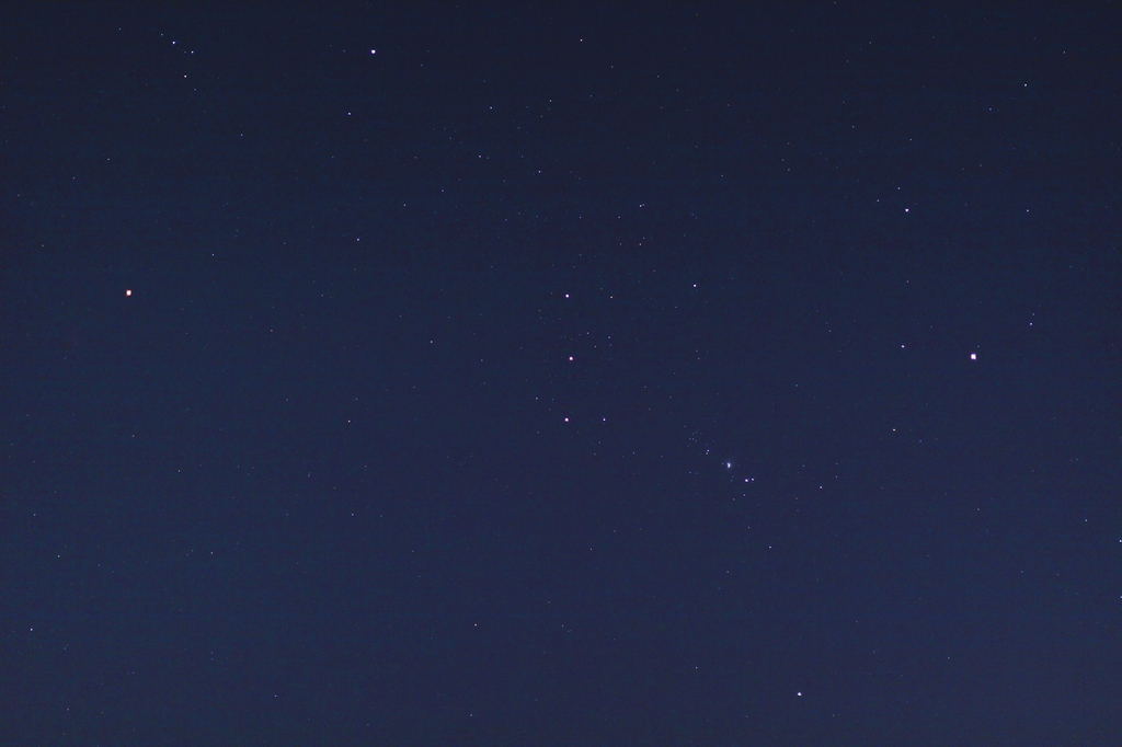 東の空を上昇するオリオン。