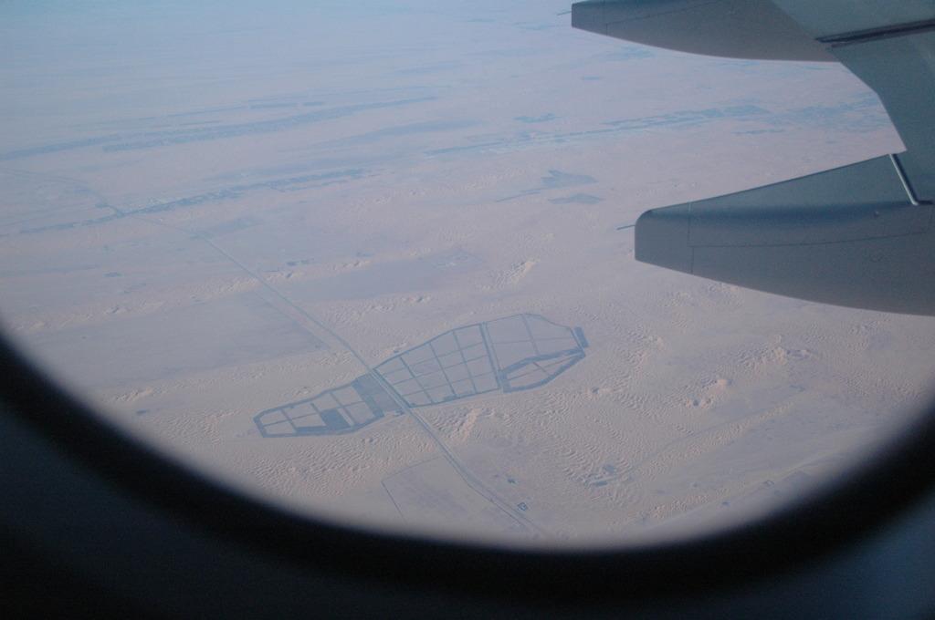 砂漠の中に・・・