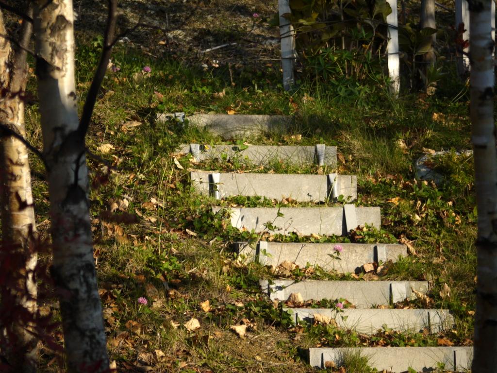 秘密の階段