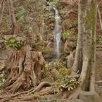 NIKON NIKON D7100で撮影した(waterfall)の写真(画像)