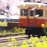 CANON Canon EOS 50Dで撮影した乗り物(出張で小湊鉄道2)の写真(画像)