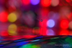 shining raindrops