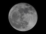 月齢15.6 (満月)