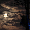 今夜、月の見える路地で