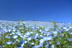 みはらしの丘・パノラマ写真風 A