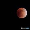星空のブラットムーン〔皆既月食〕月齢14.5