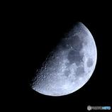 月齢7.7 九夜月 上弦 月面X