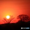 '16 大晦日の夕陽