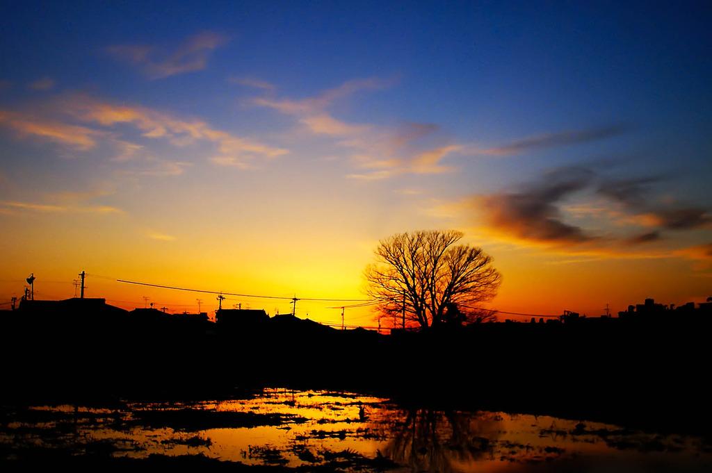水面に写った夕景