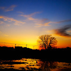 SONY DSLR-A200で撮影した風景(水面に写った夕景)の写真(画像)