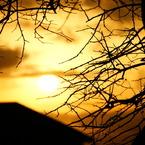 SONY DSLR-A200で撮影した風景(金の夕日)の写真(画像)