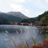 碓氷湖の秋