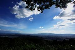 大文字山から市内を見下ろす