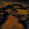 影の道の道路