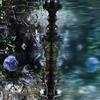 池の守り神