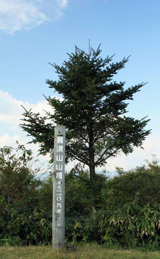 羅漢山山頂