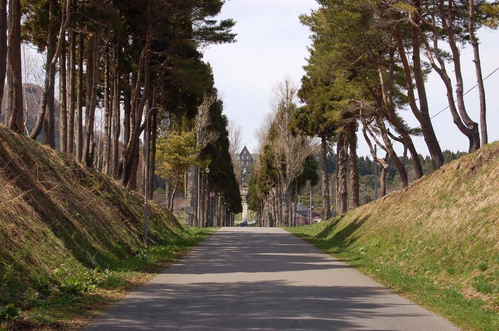 修道院へ導く道