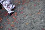 足元の紅葉