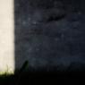 OLYMPUS E-P1で撮影した建物(球児の夢)の写真(画像)