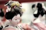 Japanese Doll Ⅵ