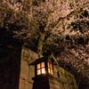 2017夜桜 - 彦根城